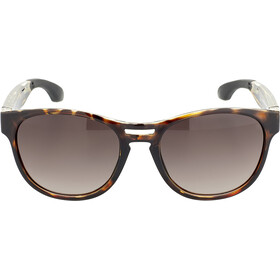 Rudy Project Spinair 56 Lunettes de soleil, demi turtle gloss - rp optics multilaser brown